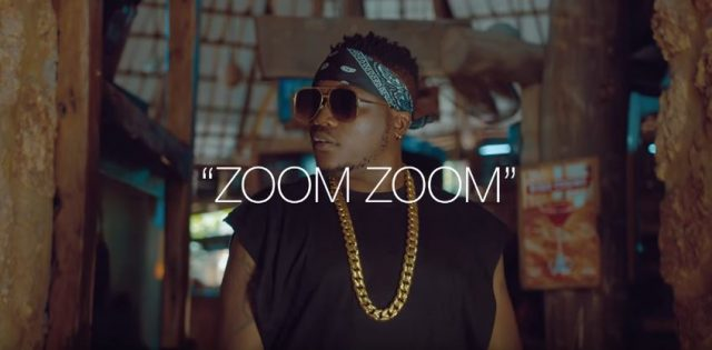 Dully Sykes - Zoom Video