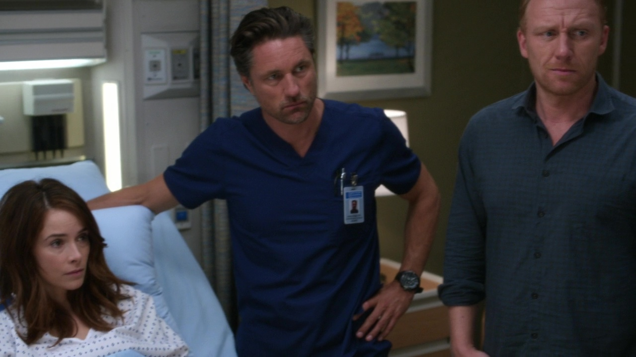 Grey's Anatomy 14x01 Break Down the House