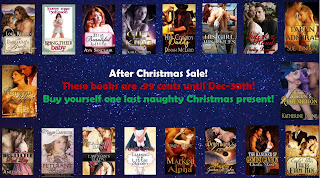 http://www.stormynightpublications.com/after-christmas-sale/