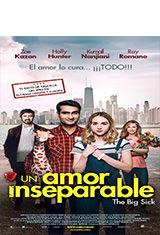 La gran enfermedad del amor (2017) BDRip 1080p Latino AC3 5.1 / ingles DTS 5.1