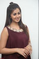Nikki Galrani in a Brown Shining Sleeveless Gown at Nakshatram music launch ~  Exclusive 063.JPG