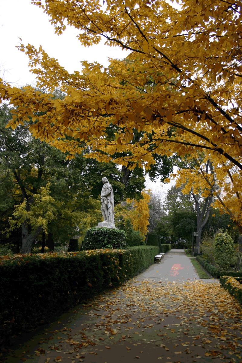 Paseo en el Real Jardín Botánico