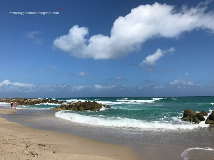 Deerfield Beach:  A Month In Florida |Ms. Toody Goo Shoes
