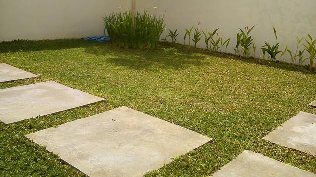 Cara basmi rumput liar di pekarangan rumah sampai ke akar agar tak tumbuh lagi