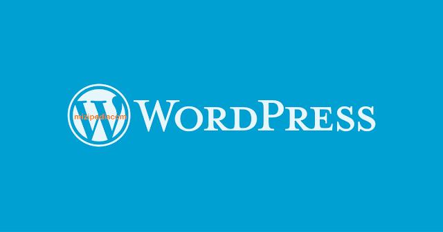 Ini Dia Cara Meningkatkan Performa WordPress