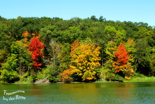 Leaves changing color at Lake Geode Iowa Freemotion by the River