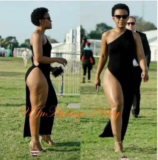 President Mugabe Blasts South African Entertainer Who Doesn't Wear Panties