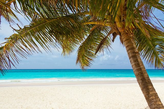 bayahibe-caraibi-libri-viaggio