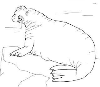 Best Of Images Elephant seal Coloring Pages For Kids Free