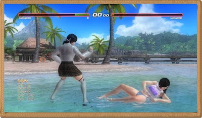 Dead or Alive 5 Last Round Fighting Games