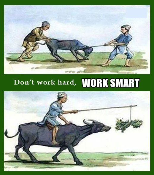 how to make money by working smart not hard