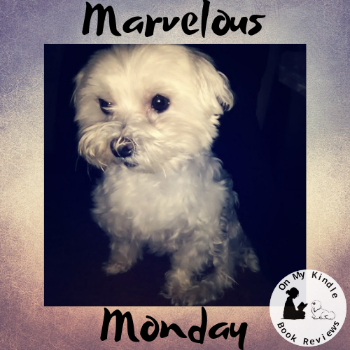 Marvelous Monday with Lexi: January 14th Edition!