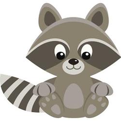 Free Raccoon