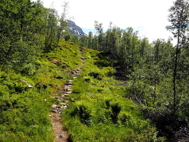 chata Skogadalsbøen, cesta, příroda, Norsko, Jotunheimen