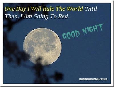 good night one day  moon