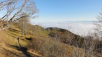 Hofbergli-Trail