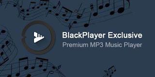 BlackPlayer EX 20.48 PREMUIM APK