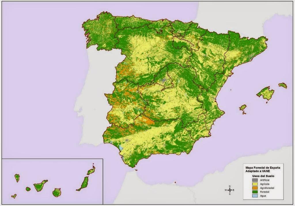 Educacion Forestal Espana Forestal En Cifras
