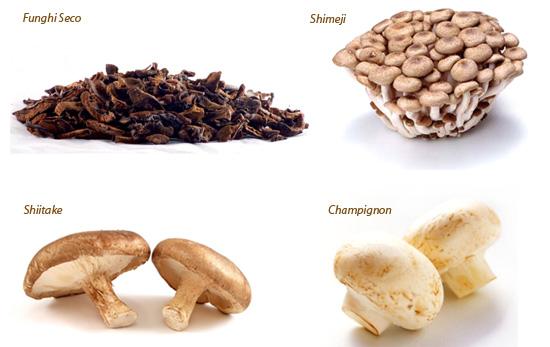 cogumelos-variedades