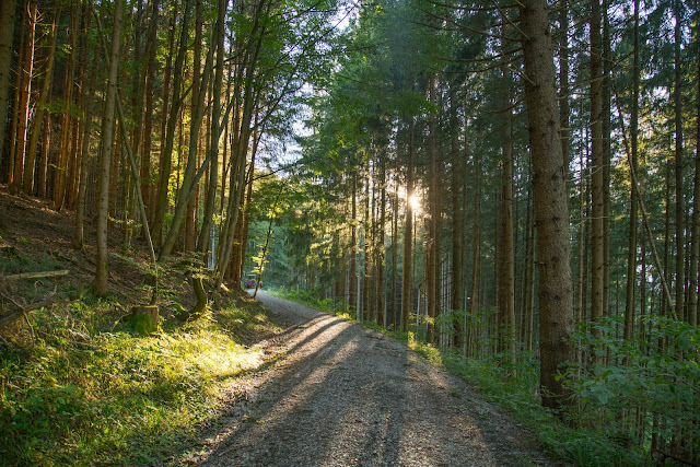 Meditationsweg Ammergauer Alpen im Blauen Land  Etappe 3 Murnau - Aidling 19