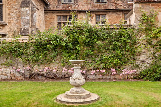Anglesey Abbey garden wall covered in flowers with stone urn
