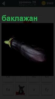 На темном фоне изображение сиреневого цвета баклажан, из которого можно сделать икру например