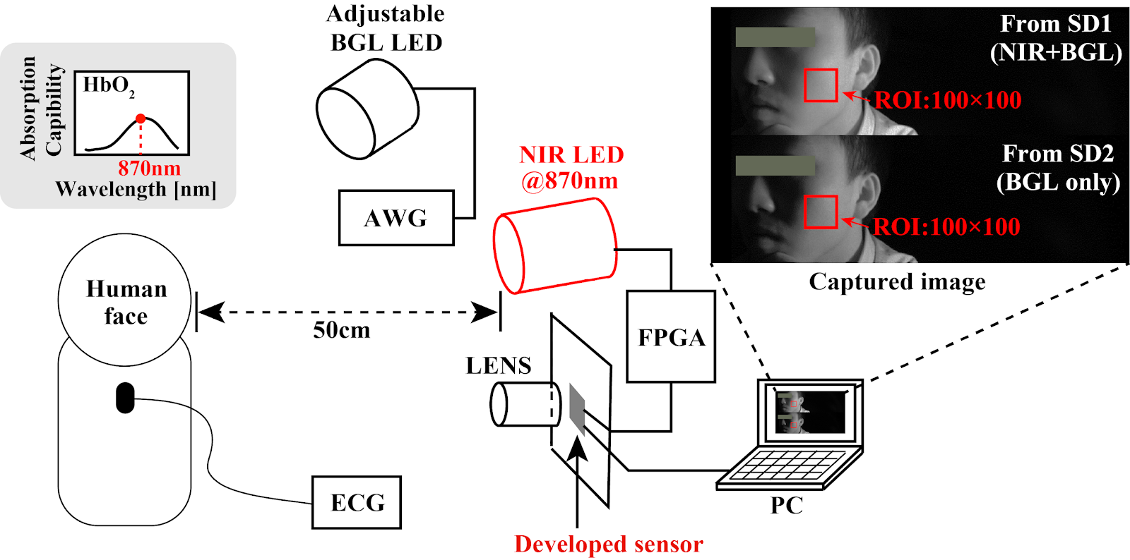 Image Sensors World: Two-Tap Pixel for Heart Rate Detection