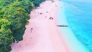 As praias de areia rosa mais marcantes do mundo