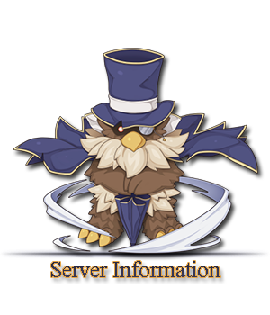 server%2Binformation.png