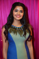 Anupama Paramesvaran in beautiful Sleeveless Gown at Zee Telugu Apsara Awards 2017 02.JPG