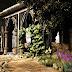 Abandoned Garden Escape