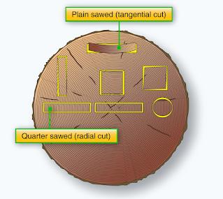 Wood Aircraft Construction and Repairs