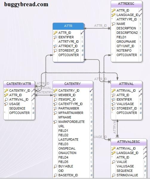 Websphere Commerce - DB Schema - Attribute