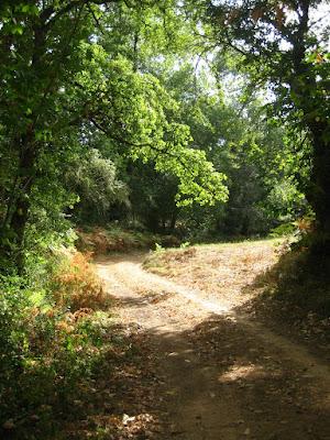 Dordogne, Perigord, countryside