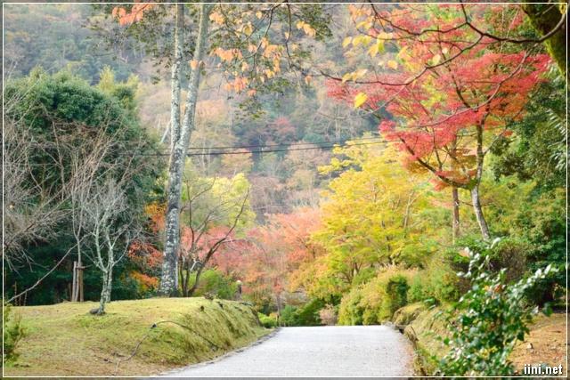 khung cảnh tháng 10 cuối thu đẹp