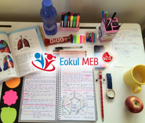 11. Sınıf Felsefe Meb Yayınları Ders Kitabı Cevapları 2018-2019