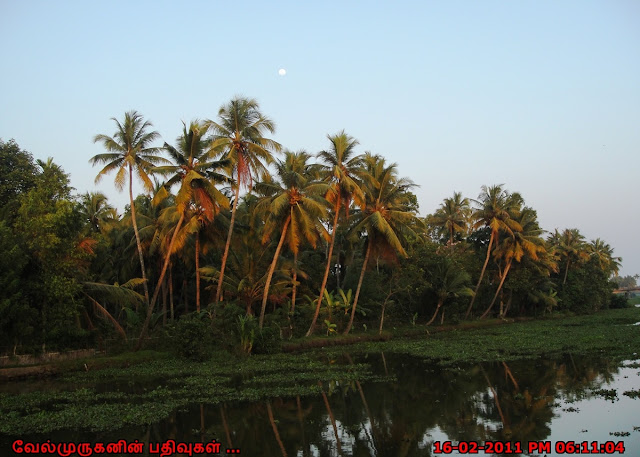Kumarakom Backwater tourism