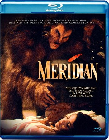 Meridian (1990) Dual Audio Hindi 480p BluRay x264 300MB ESubs Movie Download