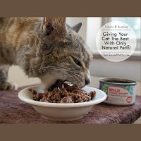 only  natural pet wet cat food review