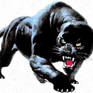 Mustika Khodam Macan Ireng Penguasa