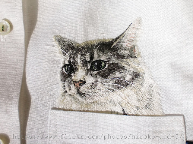 кошки вышивка. кошки в кармане рубашки, гладь