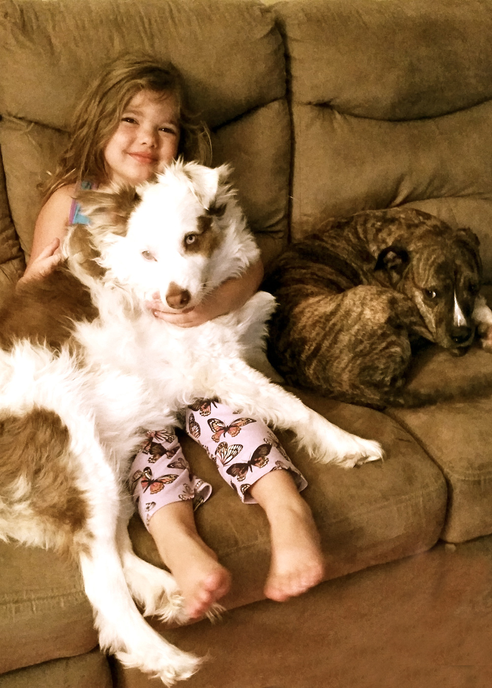 a girl and her rescue dog and why families with kids should adopt dogs
