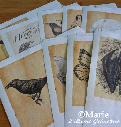 Selection of printed sheets of paper with black and white images on sepia backgrounds