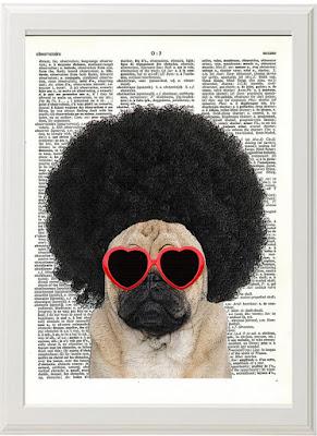 Pug estilo afro