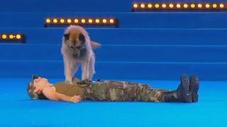 Lusy e il suo cane Deril lasciano il pubblico a bocca aperta - Video