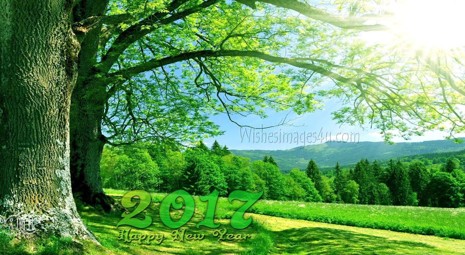Happy New year 2018 Full HD Nature Background Wallpapers ...