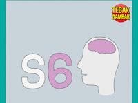 Tebak Gambar S Angka 6 dan Otak