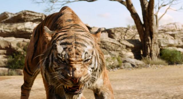 jungle book mogli 2016 filme live action shere khan