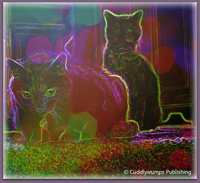 The Real Cats Outlined in Light