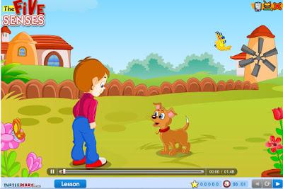 https://www.turtlediary.com/game/the-five-senses-kindergarten.html